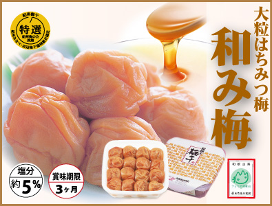 【紀州産南高梅】和み梅(塩分約5%) 800g 簡易包装