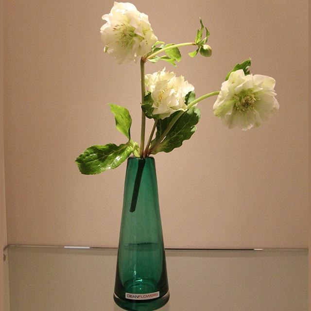 HenryDean (ヘンリーディーン) V.Poppy S/emerald