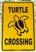スチール看板 TURTLE CROSSING L イエロー