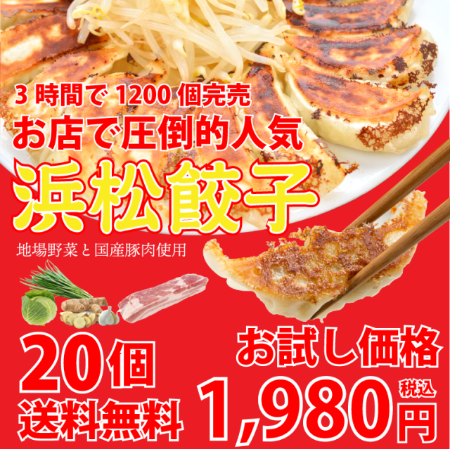 浜松餃子20個【お試し価格】【送料無料】