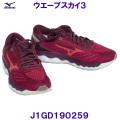 J1GD190259 【ハマノスポーツ】