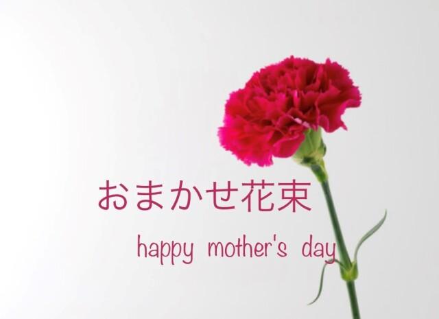 母の日 おまかせ花束 [HB-3000-5]