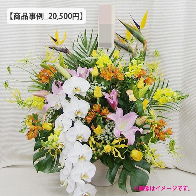 アレンジ20000円クラス事例
