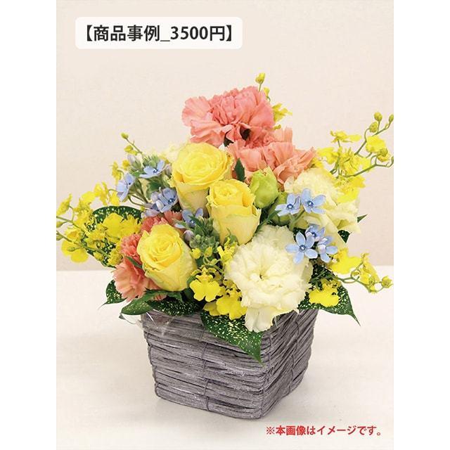 アレンジ事例3000円クラス