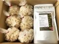 【お得セット/送料無料】生鮮ハナビラタケ 200g×6袋  焙煎ハナビラタケ茶(50g)/セット