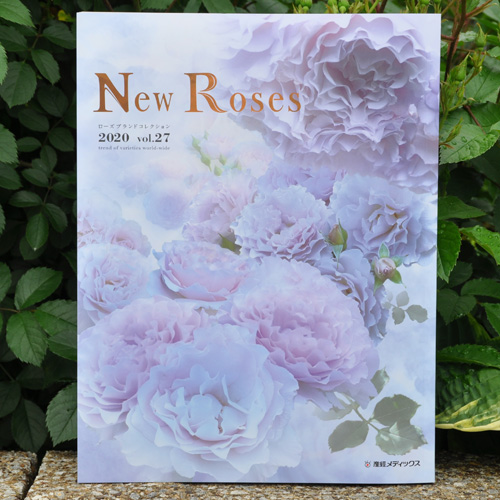 New Roses 2020春号