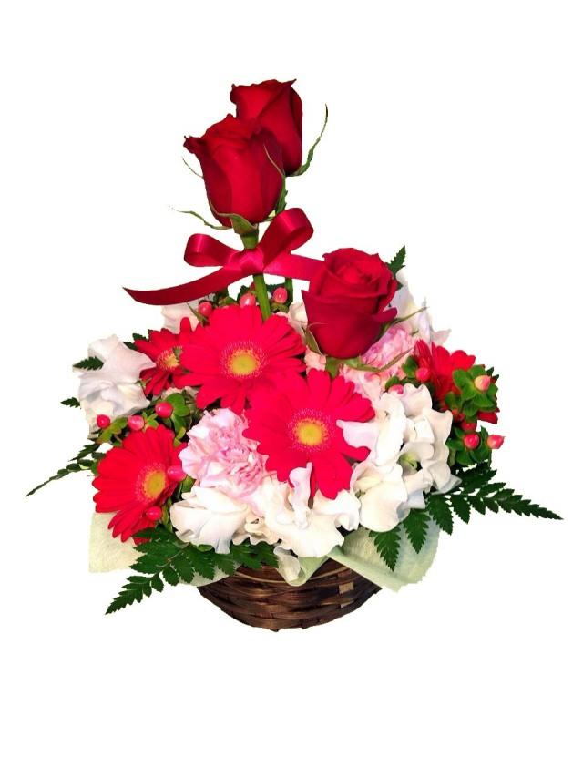 【愛妻の日】アレンジメント Rosy(ロージー)【翌日以降★本州お届け限定】