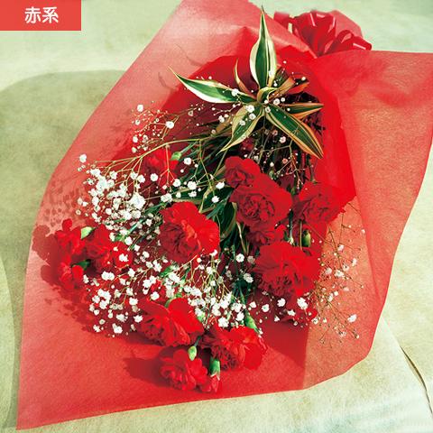 NO.6 カーネーションとカスミ草の花束