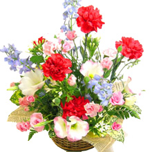 MD-007 母の日アレンジフラワー(季節の花)