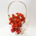 MD-001 カーネーション花鉢