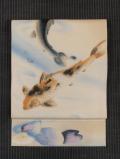 池に鯉と睡蓮の絵図 手描き染めに手刺繍 絽 名古屋帯
