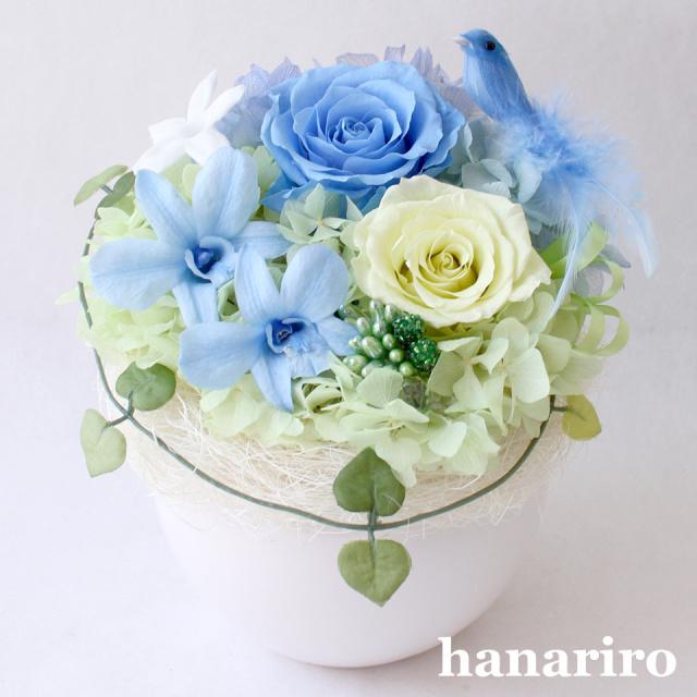しあわせの青い鳥(ブルーL)/お悔み・お供え/プリザーブドフラワー【送料無料】