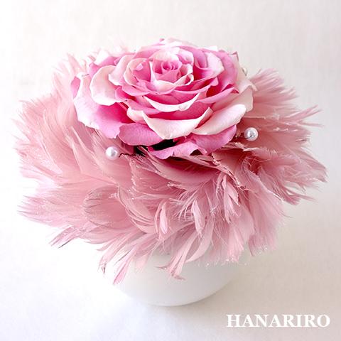 はごろも(ピンク)/プリザーブドフラワー【送料無料】