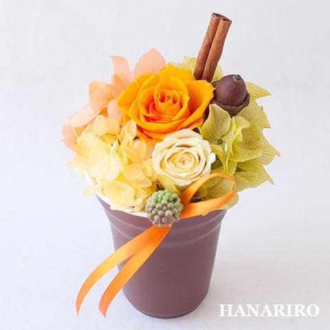 アレンジ「プリフラ(オレンジ)(クリアケース入)」/プリザーブドフラワーギフト  【送料無料♪】