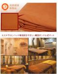 韓国式オンドル、エステサロンのエステベッド用、整体院のベッド用電気マット・マッサージベッド専用 電気カーペット/ホットカーペット・ヒートマット