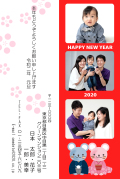 YC-050.jpg