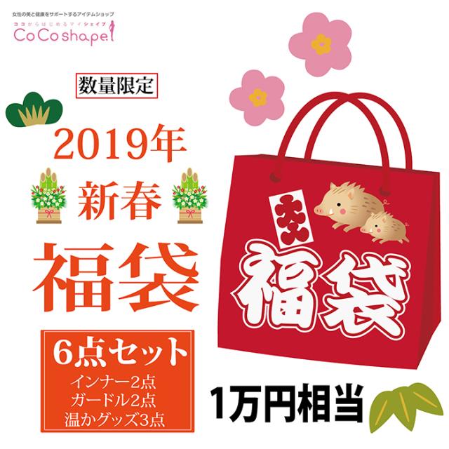 2019年新春ココシェイプオリジナル福袋 1万円相当!送料無料!数量限定!レディースアイテム