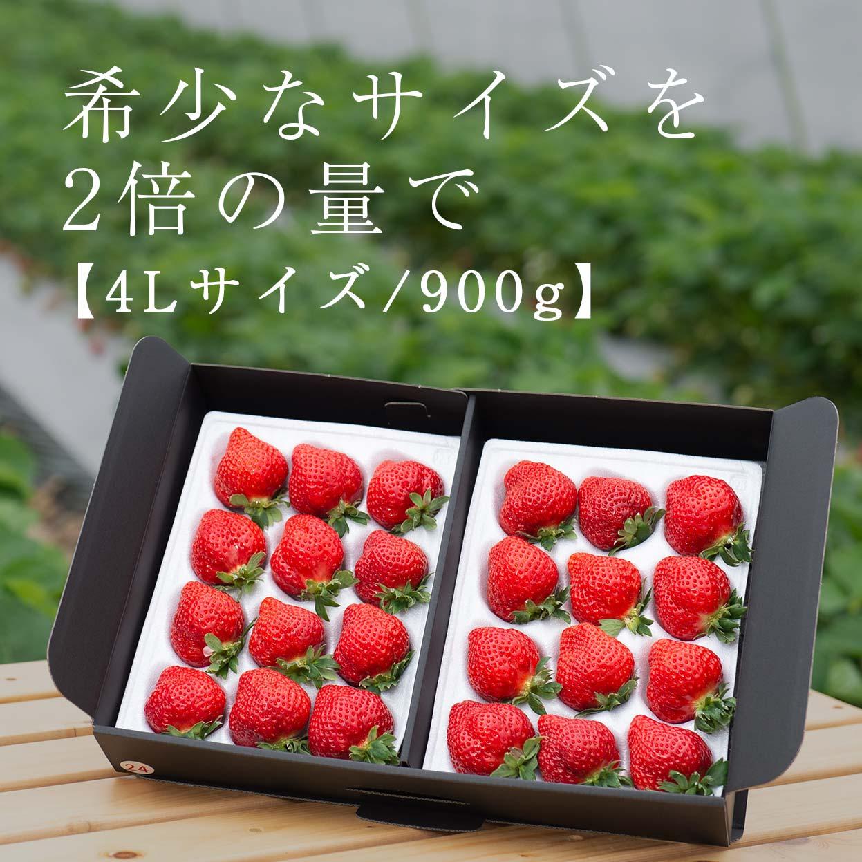 生果4L/900g