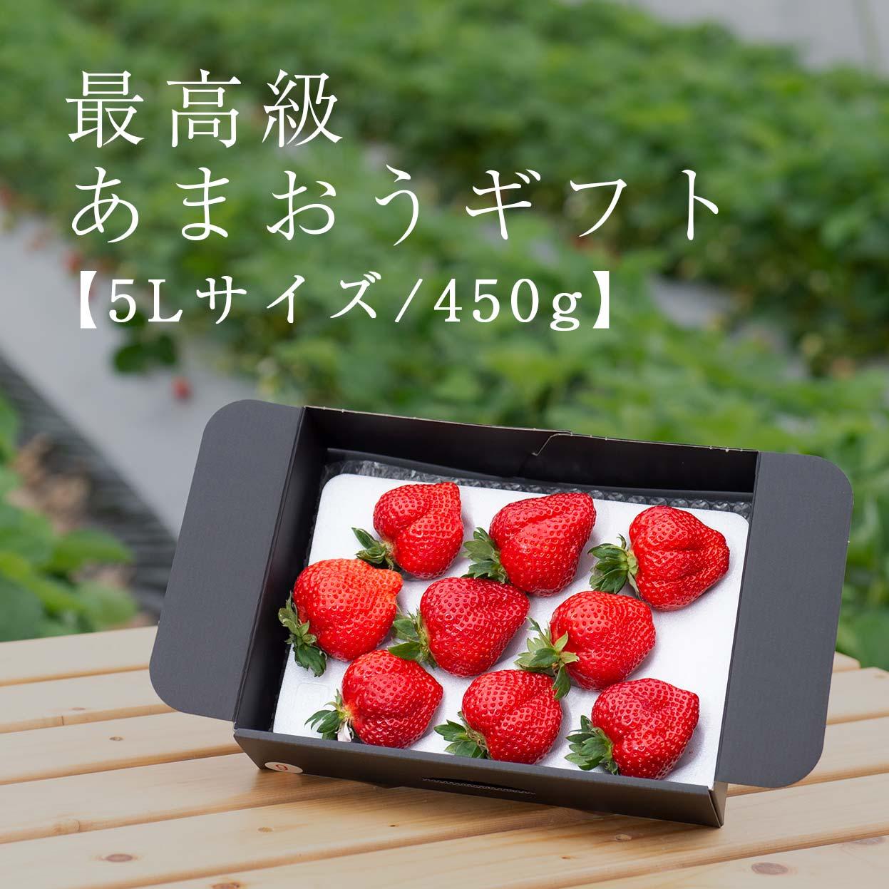 生果5L/450g