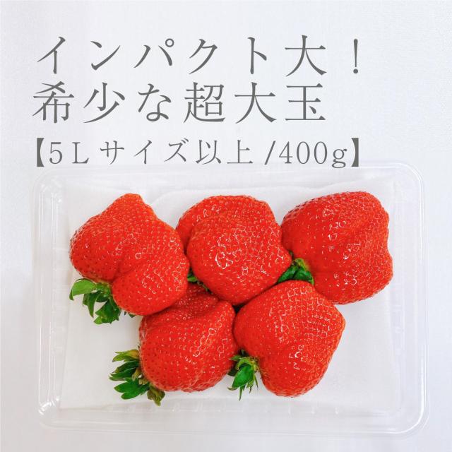 超大玉/400g