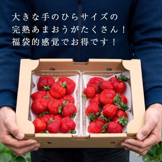 生果福袋/1000g