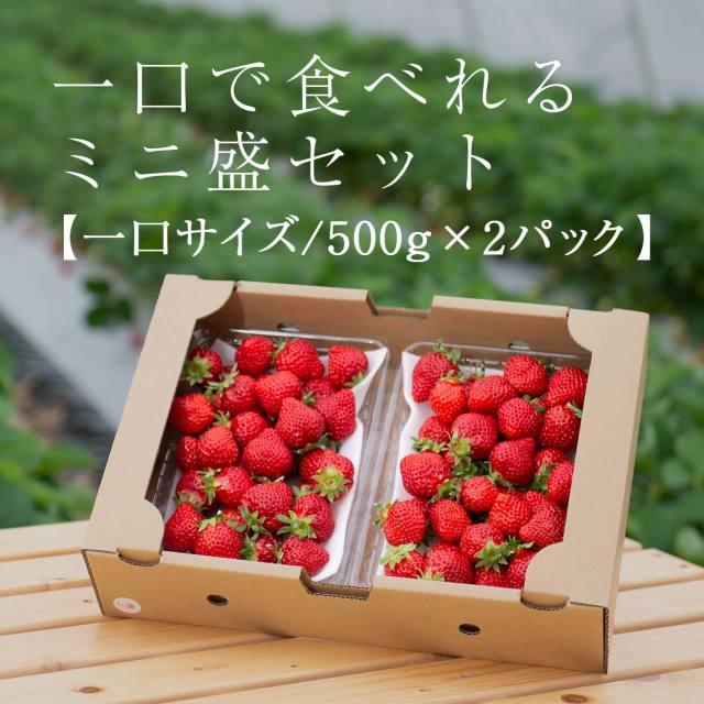 生果mix/1000g