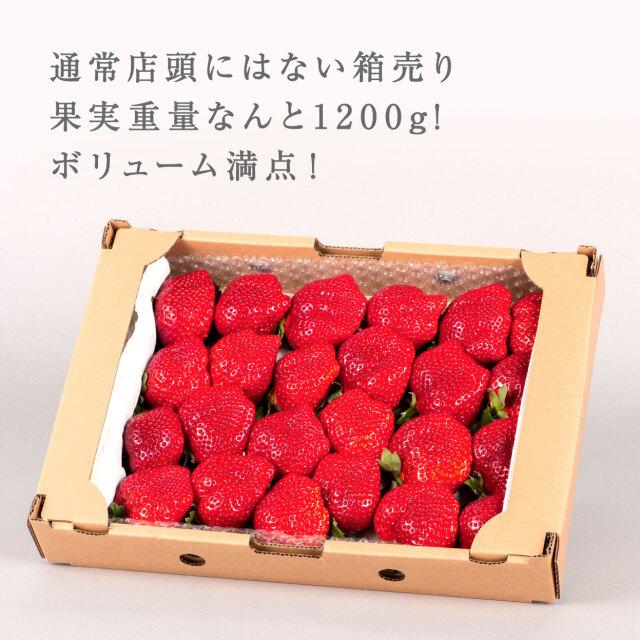 生果mix/1200g