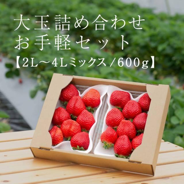 生果mix/600g