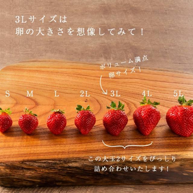 生果mix3L-4L/900g