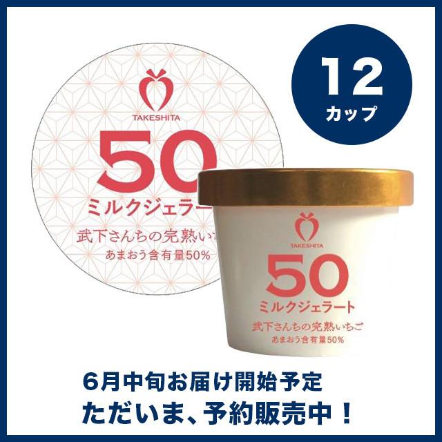 【予約販売】苺一愛 あまおう50%ミルクジェラート 12カップセット