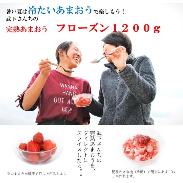 産直 あまおう いちご フローズン あまおう  1200g入り(300gx4袋) 配送日時指定 袋)