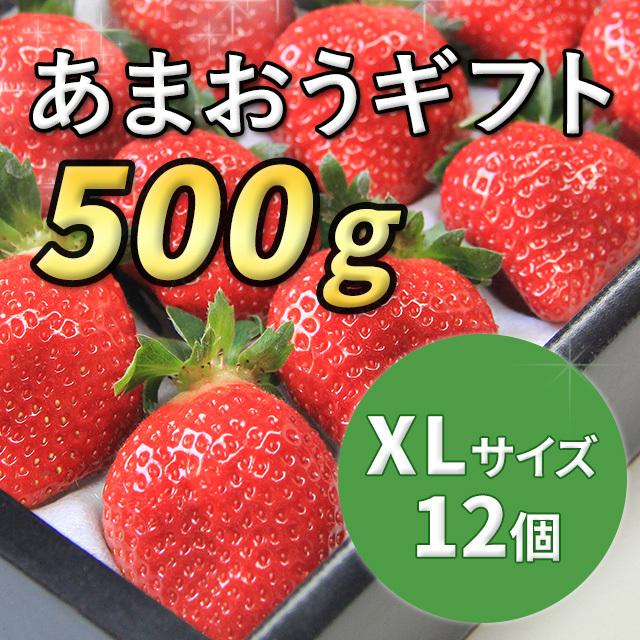 あまおうギフト XLサイズ 500g入り (12月から順次配送)