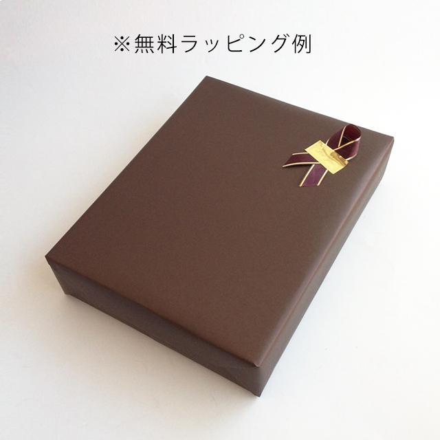 【新バッグお手入れプレミアムセット】1909シリーズ入り【送料無料】