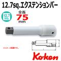 Koken プロテクターエクステンションバー