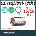 SIGNET 13110