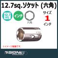 SIGNET 13111