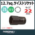 SIGNET 13672