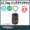 SIGNET 23173