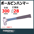 SIGNET 80143