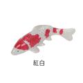錦鯉マグネット 紅白
