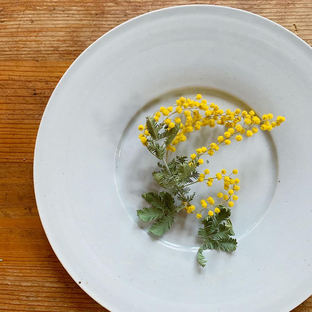 透明釉幅広リム皿//こいずみ みゆき