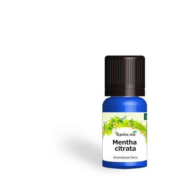 ベルガモットミント  (Mentha citrata) 5ml アロマテラピー エッセンス 精油