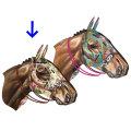 馬のオブジェ ウォールデコ MIHO UNEXPECTED THINGS