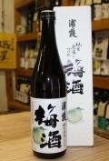浦霞 純米原酒につけた梅酒 2011年 (720ml)【宮城/佐浦】