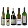 【 送料無料 !!】 薫り高く華やかな白ワイン5本セット