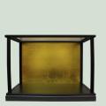 ガラスケース 70x30x45