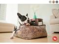 犬用ベッド|p.l.a.y ラグジュアリーペット用ベッド|犬グッズ通販HAU