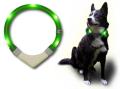 犬の交通安全ライト、光る首輪|LEDドッグカラー LEUCHTIE Plus (犬用セーフティーライト)|犬グッズ通販HAU
