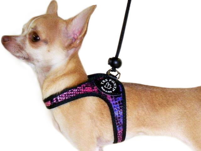 イタリア製小型犬用ハーネス(おしゃれ&かわいい)|パイソンパターン(ヘビ柄)  トレ・ポンティ|犬グッズ通販HAU