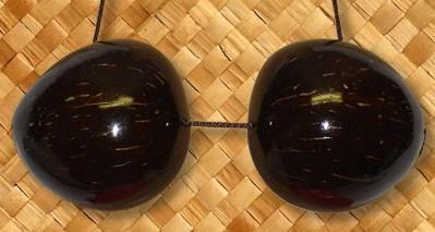 Coconuts Bra Cカップ